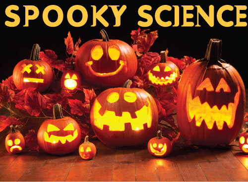 The Leonardo Museum Spooky Science Exhibit | Salt Lake Blog